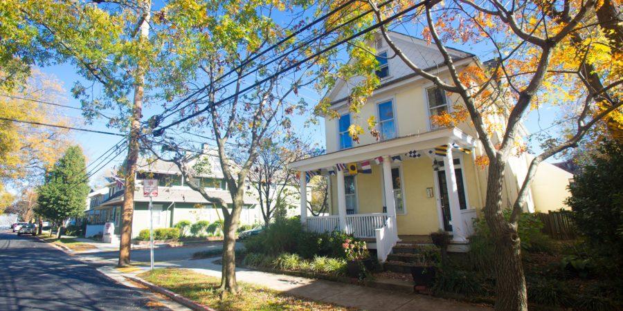 home renovation tips rachel frentsos annapolis real estate
